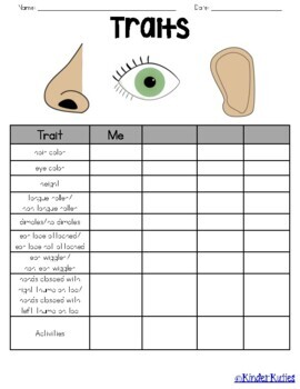 Traits Lesson Plan and Worksheet Grades 3-5