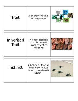 Traits Unit Vocabulary Cards