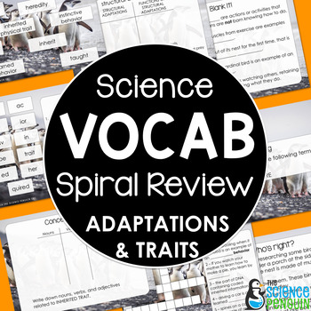 Traits and Adaptations Vocabulary Review