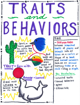 5th Grade Traits and Behaviors