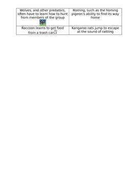 Traits and adaptations notes