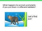 Traits in Different Habitats