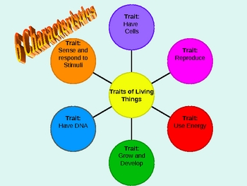 Traits of Living Things PPT Notes