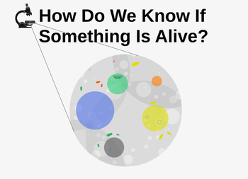 Traits of Living Things Prezi and Assignment