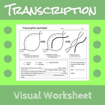 Transcription Worksheet