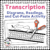 Transcription and RNA Modification Diagrams, Readings, and Activity Packet