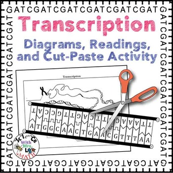 Transcription and RNA Modification Diagrams, Readings, and
