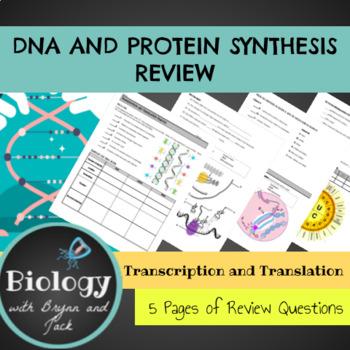 DNA, Transcription and Translation Practice