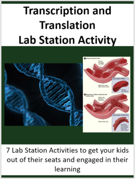 Transcription and Translation - Protein Synthesis - 7 Lab Station Activities