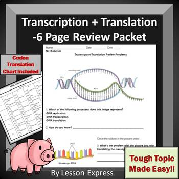 Transcription and Translation Review Packet