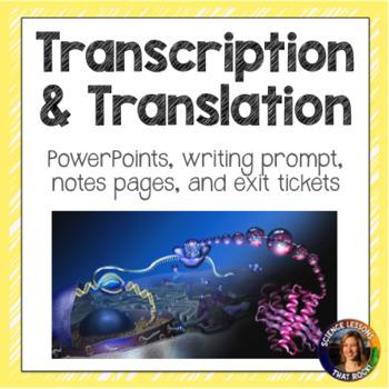 Transcription and Translation SMART notebook presentations