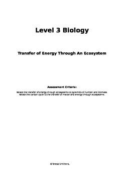 Transfer of Energy Through Ecosystems