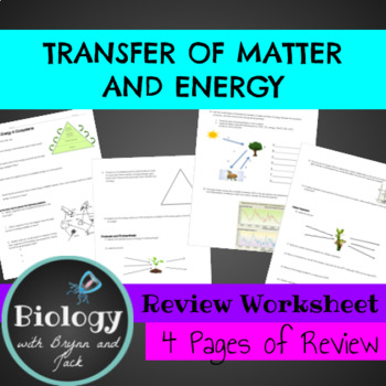 Transfer of Energy and Matter in Ecosystems: Review
