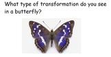Transformation Exit Cards