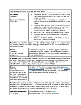 Transitional Species Lesson Plan