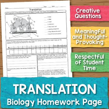 Translation Biology Homework Worksheet