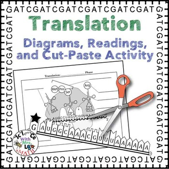 Translation Diagrams, Readings, and Activity Packet