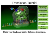 Translation Interactive Tutorial