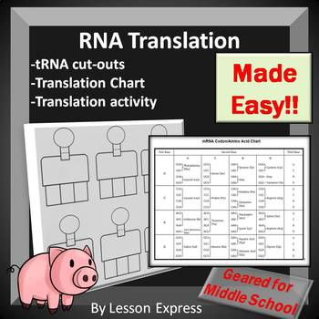 Translation Review Activity and tRNA Cut-Out Templates - Protein Synthesis