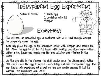 Transparent Egg Experiment FREEBIE