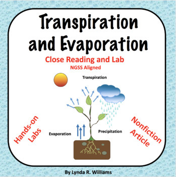 Transpiration and Evaporation Water Cycle Lab NGSS Aligned