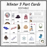 Winter Vocabulary 3 Part Cards - Montessori Editable