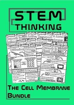 Transport Across the Cell Membrane Middle School Biology Doodle Notes Bundle