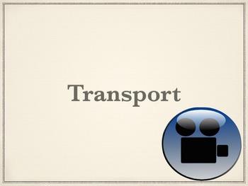 Transport Cheat Sheet Answers VIDEO