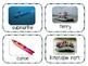 Transport Flash cards