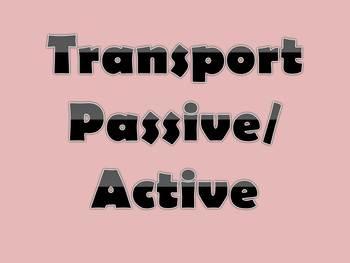 Transport Passive-Active Handout