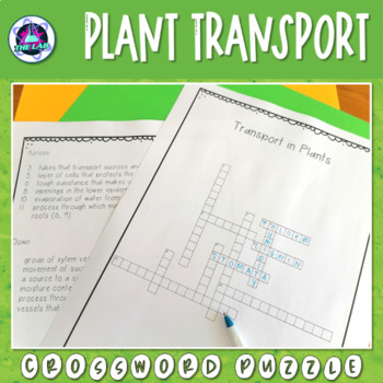Transport in Plants Crossword Puzzle