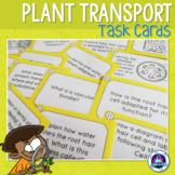 Transport in Plants Task Cards