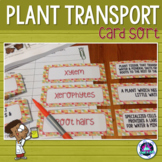 Transport in Plants Vocabulary Card Sort