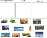 Transportation, Food, Shelter, Sort