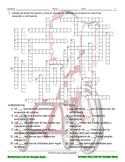 Transportation-Vehicles Interactive Spanish Crossword-Google Apps