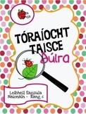 Tóraíocht Taisce Dúlra as Gaeilge // Nature Scavenger Hunt in Irish