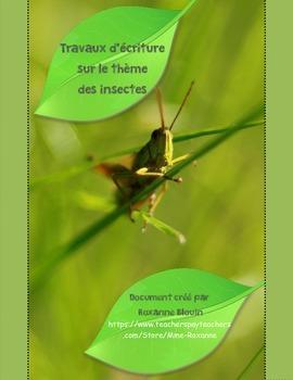 Travaux d'écriture : Les insectes