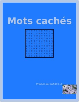 Travaux domestiques (Chores in French) Wordsearch for differentiated learning
