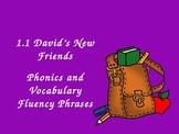 Treasures 2nd Grade 1.1 David's New Friends Fluency