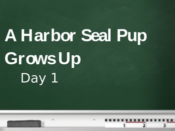 Treasures - 2nd Grade - A Harbor Seal Pup Grows Up - Day 1