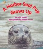 "Treasures- ""A Harbor Seal Pup Grows Up"""