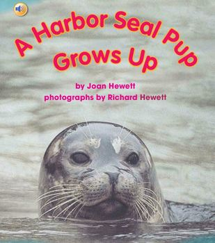 "Treasures- ""A Harbor Seal Pup Grows Up"""