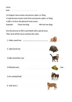 Treasures-Harbor Seal. Plural nouns, nouns and verbs