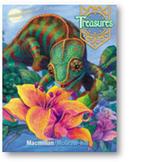 Treasures Higher Order Questions 4.2.4