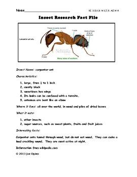 Treasures MMH Grade 1 Unit 6 Common Core Integrated Activities