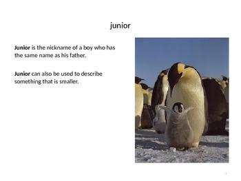 Treasures Penguin Chick Vocabulary PowerPoint