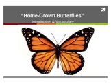 """Treasures Reading - """"Home Grown Butterflies"""" - Vocabulary & Spelling"""