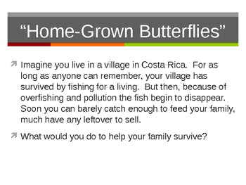 "Treasures Reading - ""Home Grown Butterflies"" - Vocabulary & Spelling"