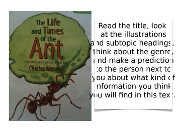 Treasures Unit 4 - The Life and Times of the Ant