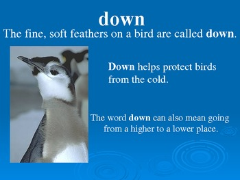 Treasures Vocabulary Power Point for Penguin Chicks